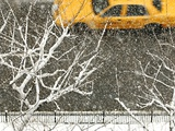 Yellow cab on Park Avenue in a snowstorm Photographic Print by Bo Zaunders