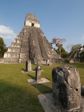Temple I and the Great Plaza at Tikal Photographic Print by Sergio Pitamitz