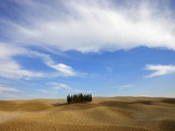 Orcia valley in autumn Photographic Print by Fabio Muzzi