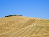 Italy, Tuscany, Harvested corn field, bales of straw in background Photographie par Fotofeeling 