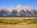 Parked cars at Schwabacher Landing Photographic Print by Frank Lukasseck