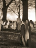 Tombstones in cemetery Reproduction photographique par Rudy Sulgan