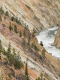 Yellowstone River in Grand Canyon of the Yellowstone Photographic Print by Jon Bower