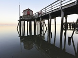 Fishing pier at low tide in a calm bay Photographic Print by Dermot Conlan