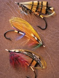 Flyfishing: Full Dressed Atlantic Salmon Flies, Canada. Photographic Print by Keith Douglas