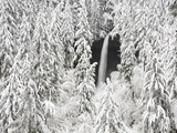 North Falls surrounded by snow-covered trees Photographic Print by Craig Tuttle