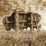 Abandoned Buffalo Sign 写真プリント : トム・マークス