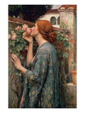 The Soul of the Rose Lmina gicle por John William Waterhouse
