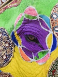 Close-up of a Painted Elephant, Elephant Festival, Jaipur, Rajasthan, India Photographic Print