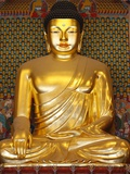 Statue of Sakyamuni Buddha in Main Hall of Jogyesa Temple Photographic Print by Pascal Deloche