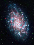 Triangulum Galaxy Photographic Print