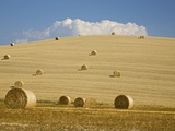 Italy, Tuscany, Bales of straw on corn fields Photographic Print by Fotofeeling 