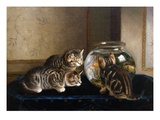 An Intense Study Premium Giclee Print by Horatio Henry Couldery