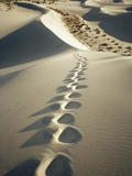 Footprints in White Sand Dunes Photographic Print by Ralph Mercer