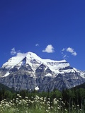 Mount Robson, 3954 M, Highest Peak in Canadian Rockies, British Columbia, Canada. Lmina fotogrfica por Chris Cheadle