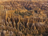 Hoodoos in Bryce Canyon National Park Photographic Print by John Eastcott & Yva Momatiuk