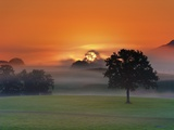 Foggy landscape at sunrise Photographic Print by Frank Krahmer
