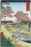 Sunset Hill, Meguro in the Eastern Capital Premium Giclee Print by Ando Hiroshige