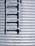 Ladder on Silo Photographic Print by Paul Edmondson