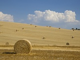 Italy, Tuscany, Bales of straw on harvested corn fields Photographic Print by Fotofeeling
