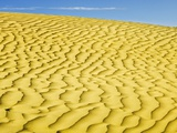 Pattern in sand dunes Photographic Print by Mike Grandmaison