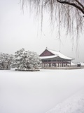 Gyungbok royal Palace under snow Photographic Print by Sung-Il Kim