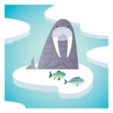 Walrus on pack ice Giclee Print by Harry Briggs