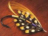 Hand Tied Atlantic Salmon Fishing Fly, British Columbia, Canada. Photographic Print by Keith Douglas
