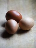 Brown eggs Fotografisk tryk af Elisa Lazo De Valdez