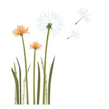 Dandelions Giclee Print by Anne Bryant