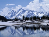 Grand Teton Reflected in Lake Fotodruck von Chris Rogers