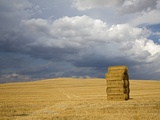 Italy, Tuscany, Stacked bales of straw on corn field Photographic Print by Fotofeeling