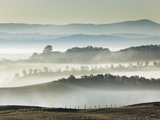 Misty hills in Tuscany Photographic Print by Frank Krahmer
