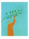 Man picking an orange Giclee Print by Marie Bertrand