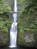 USA, Oregon, Columbia River Gorge Area, Scenic Waterfalls, Multonomah Falls Lmina fotogrfica por Chris Cheadle