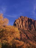 USA, Utah, Zion National Park, Cliffs Along Virgin River Photographic Print by Chris Cheadle