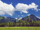 Countryside near the Alps Photographic Print by Frank Krahmer