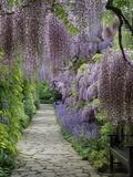 Jardín de primavera Lámina fotográfica