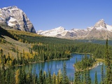 Mary Lakes and Autumn Larches, Lake O'Hara Region, Yoho National Park, British Columbia, Canada. Photographic Print by John E Marriott