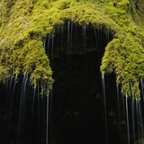 A Moss Covered Waterfall in the Bavarian AllgU Photographic Print by Micha Pawlitzki