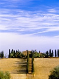 Tuscany landscape Photographic Print by Blaine Harrington