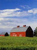 Old Red Barn in Field Photographic Print by Terry Eggers