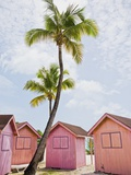 Pink tropical bungalows Photographic Print by Alfred Saerchinger