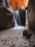 USA Utah Slot Canyon Waterfall Kanarra Creek Photographic Print by Fotofeeling