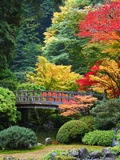Bridge in Japanese Garden Photographie par Craig Tuttle