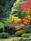 Brücke in japanischem Garten Fotografie-Druck von Craig Tuttle