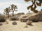 Picnic table in desert Photographic Print by Peter Bohler