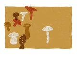Mushrooms Giclee Print by Anne Bryant
