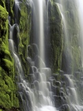 USA, Oregon, Proxy Falls - Waterfall Details Lmina fotogrfica por Chris Cheadle