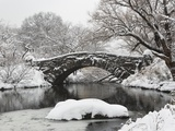 Lake and bridge in winter Photographie par Fotog